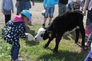 Mini loomaaed